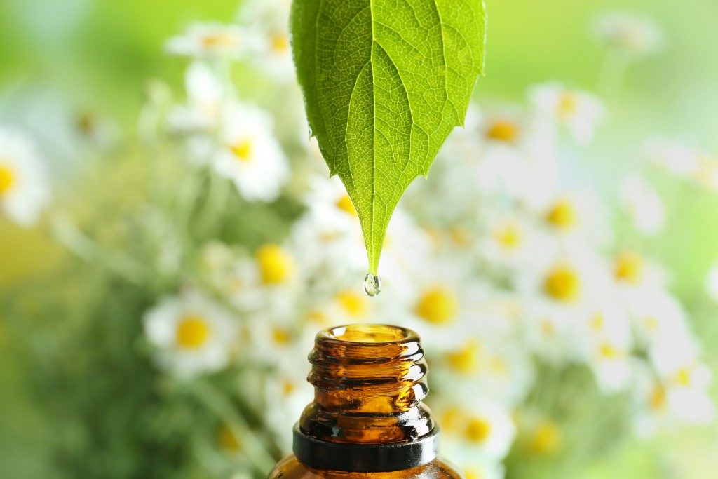 extraction of essential oil